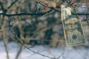 How Moving Your Money to a High-Yield Savings Account Will Help it Grow