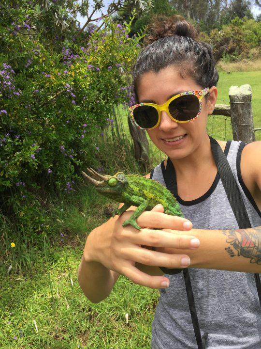 Mackenzie seen here holding a chameleon .